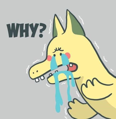 Dan mang che anh rong o Hai Phong thanh Pikachu-Hinh-5