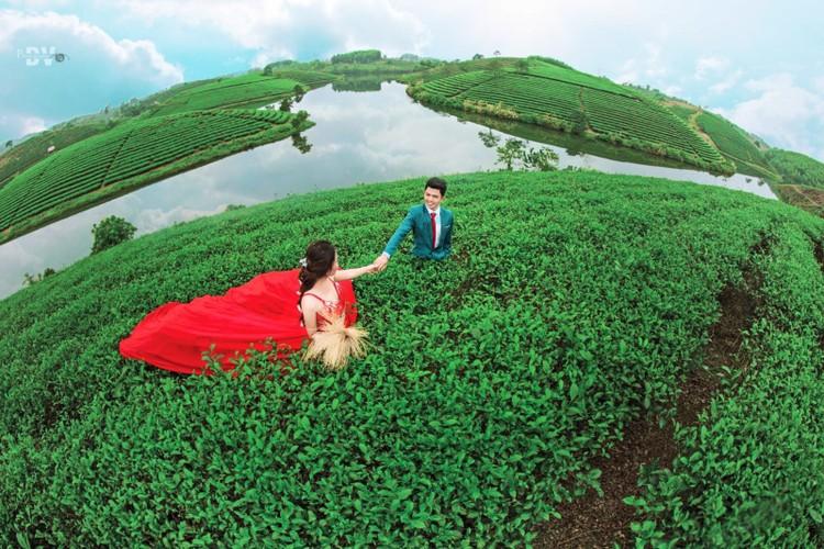Dao che Nghe An, diem check-in xanh muot cho dan phuot-Hinh-5