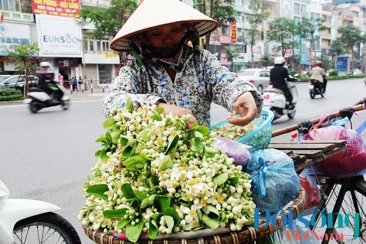 Hoa buoi xuong pho, moi chum hoa dat ngang bat pho-Hinh-13