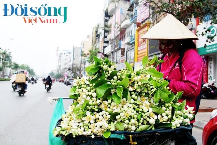 Hoa buoi xuong pho, moi chum hoa dat ngang bat pho-Hinh-17