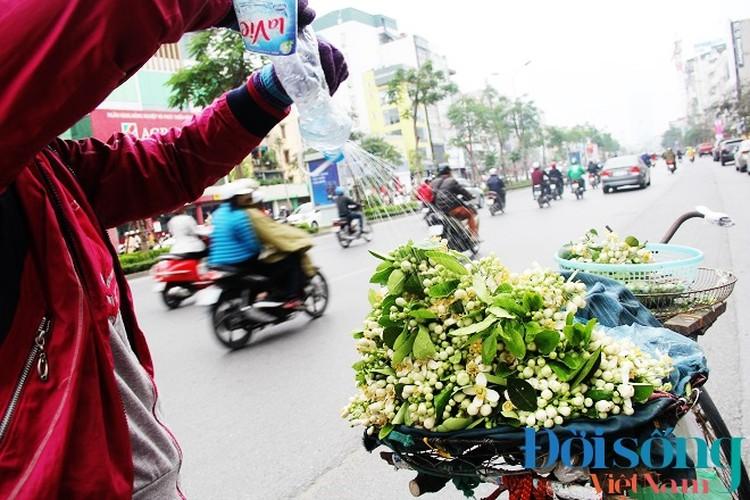 Hoa buoi xuong pho, moi chum hoa dat ngang bat pho-Hinh-18