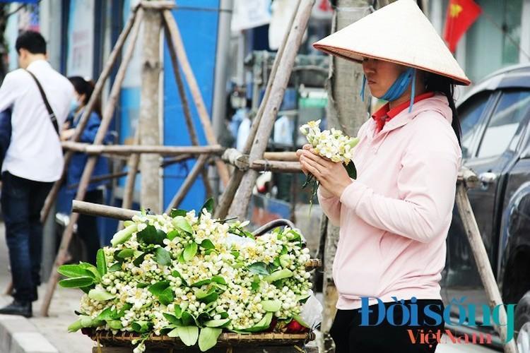 Hoa buoi xuong pho, moi chum hoa dat ngang bat pho-Hinh-2
