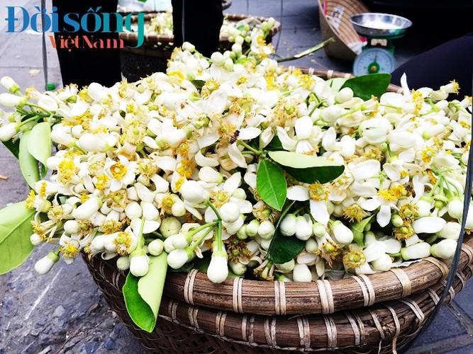 Hoa buoi xuong pho, moi chum hoa dat ngang bat pho-Hinh-5