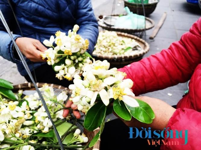 Hoa buoi xuong pho, moi chum hoa dat ngang bat pho-Hinh-6