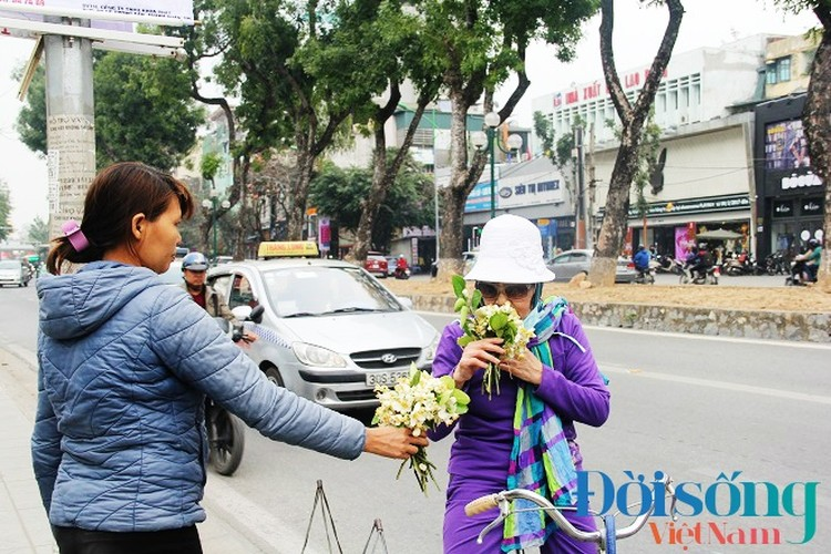 Hoa buoi xuong pho, moi chum hoa dat ngang bat pho-Hinh-8