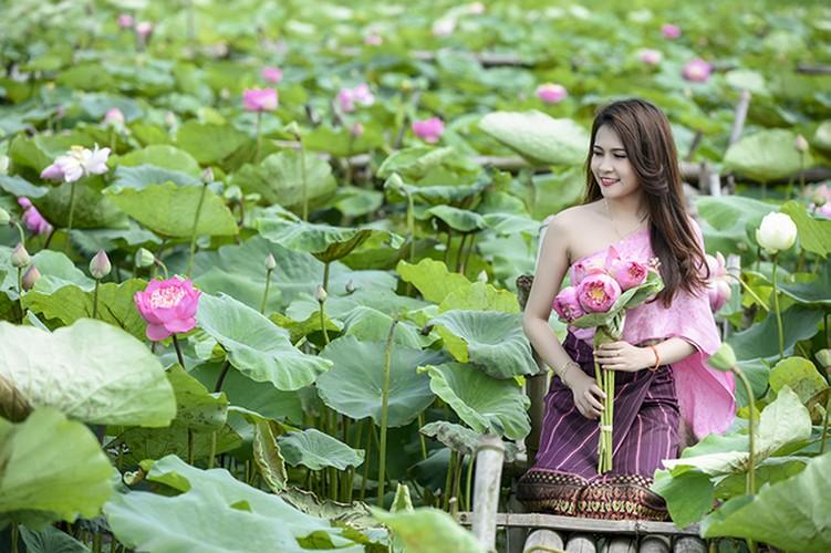 Nu sinh Lao dep diu dang trong bo anh sen Viet