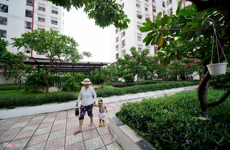 Can canh nhung can ho chi rong 20 m2 o Sai Gon-Hinh-3