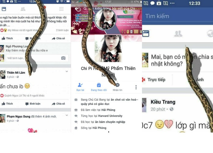 Dan mang tuc dien voi tro lua con ran tren Facebook-Hinh-4