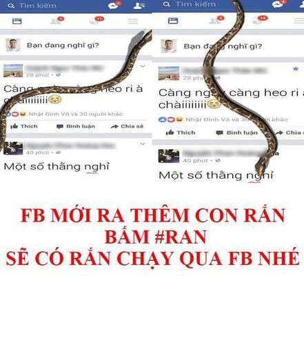 Dan mang tuc dien voi tro lua con ran tren Facebook