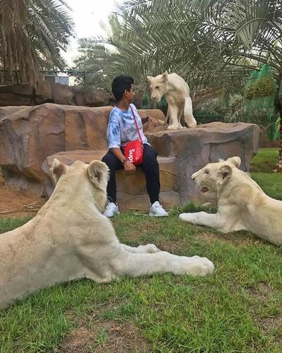 Cau am Dubai khang dinh ten tuoi trong gioi con nha giau-Hinh-3