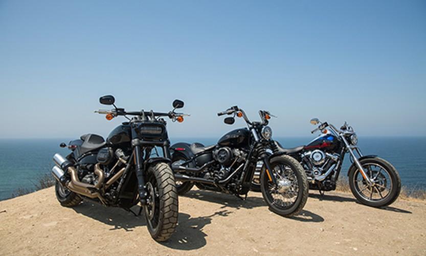 Xe moto Harley-Davidson Softail 2018 lo gia tai Viet Nam-Hinh-2