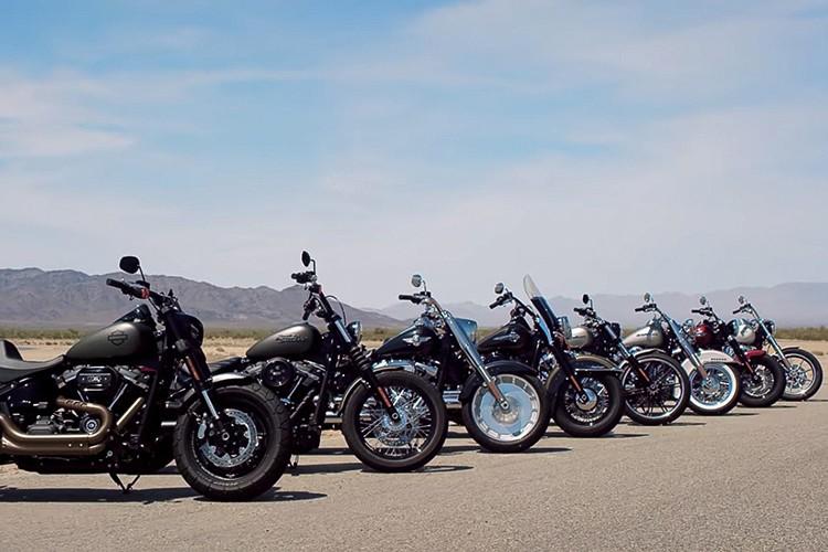 Xe moto Harley-Davidson Softail 2018 lo gia tai Viet Nam-Hinh-3