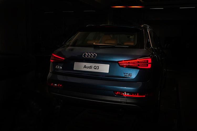 Audi TT va Q3 se ra mat tai trien lam oto VIMS 2017-Hinh-3