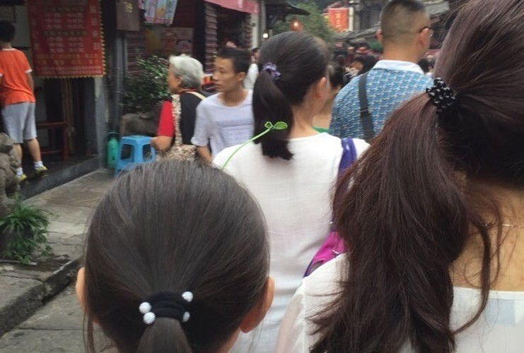 Gioi tre Bac Kinh ro trao luu deo mam cay tren dau-Hinh-3