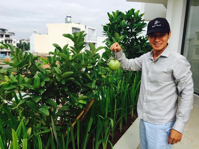 Moi mat ngam vuon rau khung cua vo chong Ly Hai - Minh Ha-Hinh-14