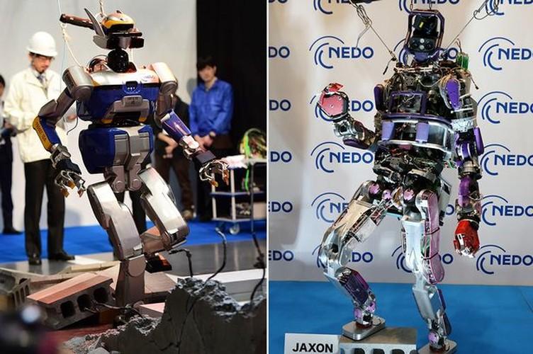 10 mau robot co kha nang cuu nguoi-Hinh-3
