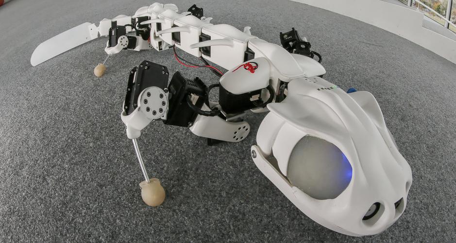 10 mau robot co kha nang cuu nguoi-Hinh-4