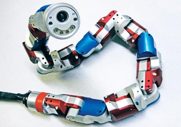 10 mau robot co kha nang cuu nguoi-Hinh-9