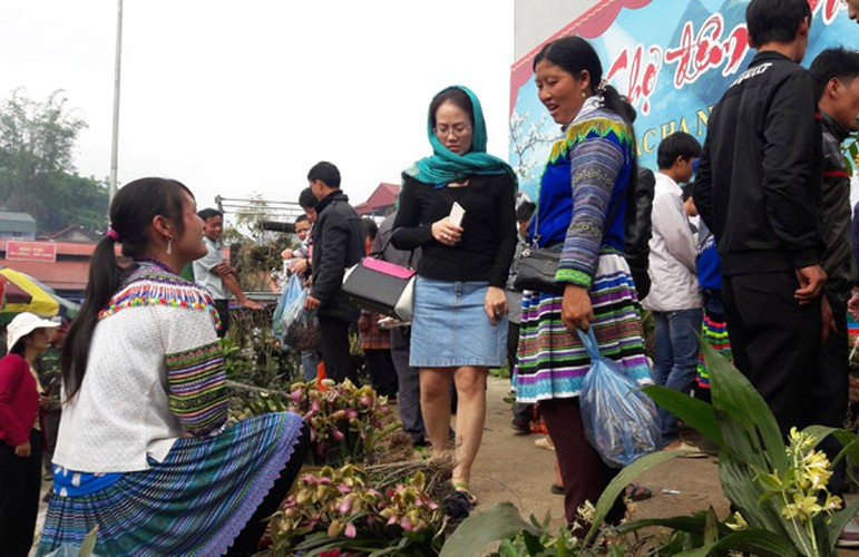 Ngam khu ban hoa lan doc dao o cho phien Bac Ha-Hinh-9