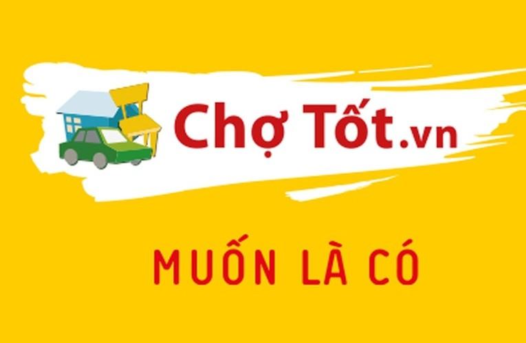 Danh tinh ga khong lo vua thau tom Cho Tot-Hinh-10