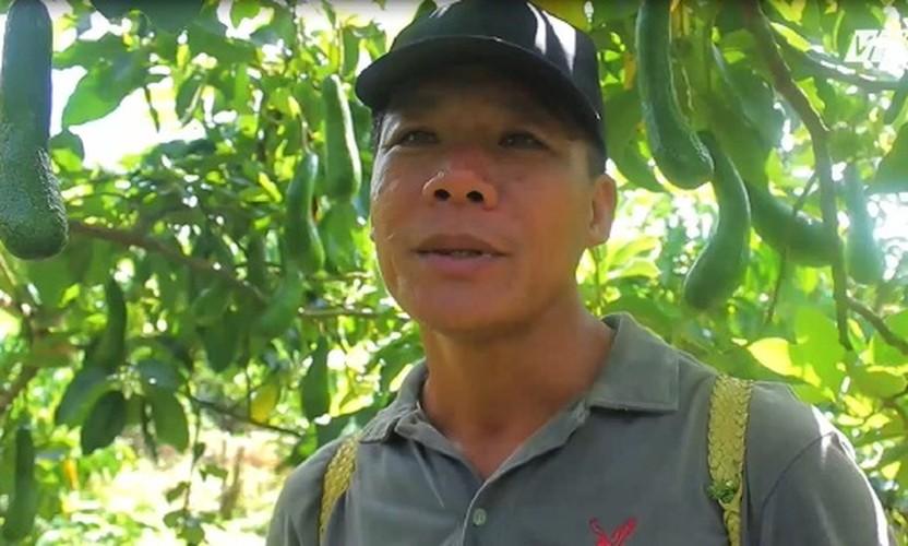 "Can canh bo ""di"" dai nua met thu tien ty o Lam Dong-Hinh-10"