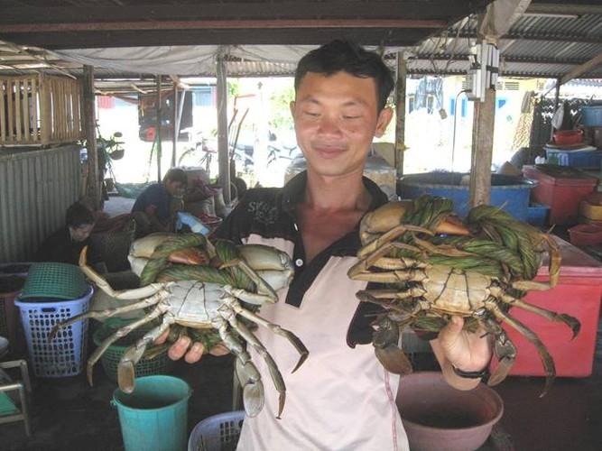 Tan muc cua bien Tra Vinh khong lo 350.000 dong/kg-Hinh-3