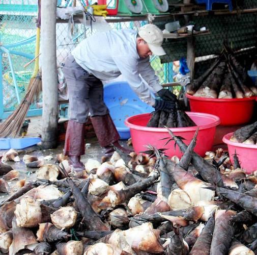 Dac san phat them: Trai rung Bay Nui dua nhau chin ro-Hinh-6