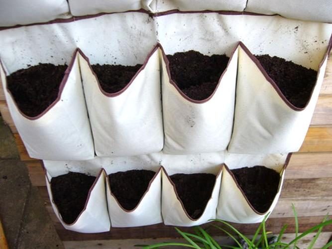 Meo trong rau cuc hay danh cho nha chat-Hinh-6