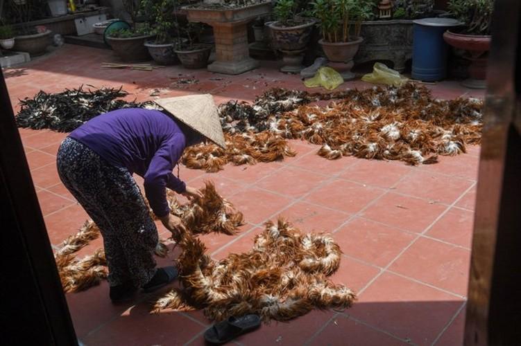 Cuoc chien ton tai khoc liet cua choi long ga Viet-Hinh-2