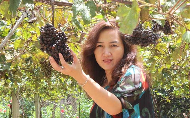 "Khach nuom nuop den vuon nho rung cua lao nong ""khung"" Tay Ninh-Hinh-4"