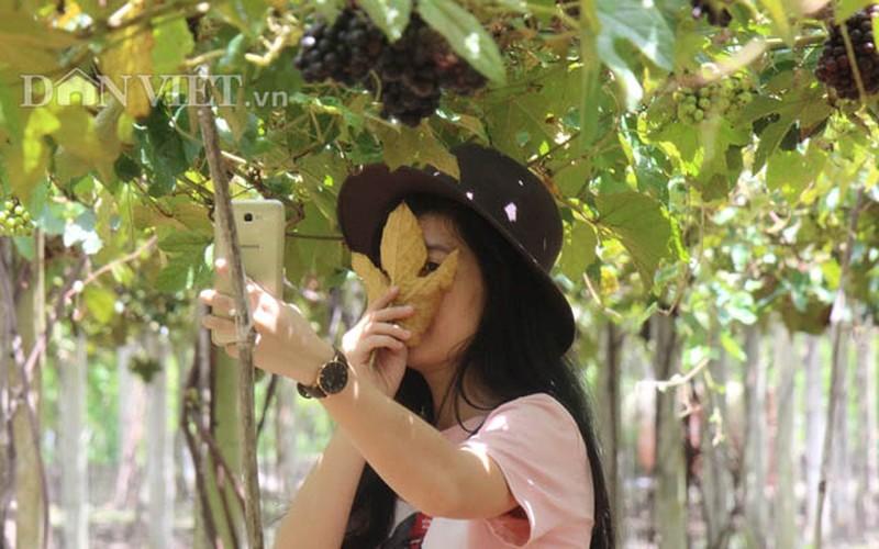 "Khach nuom nuop den vuon nho rung cua lao nong ""khung"" Tay Ninh-Hinh-5"