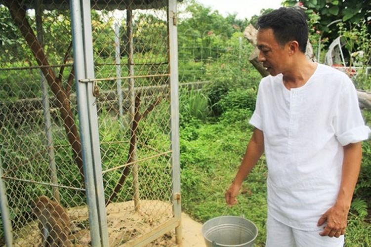 Vuon rau sach muot mat trong biet thu 2.000m2 cua ca si Viet Hoan-Hinh-3
