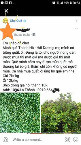 "Rot gia the tham, hang loat trai cay ""keu cuu"" cho mang-Hinh-12"