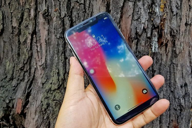 "Hinh anh iPhone X ""nhai"" ve Viet Nam gia chua toi 3 trieu-Hinh-8"