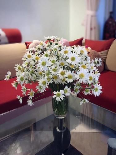 Cach trang tri nha dep tinh khoi voi cuc hoa mi-Hinh-2