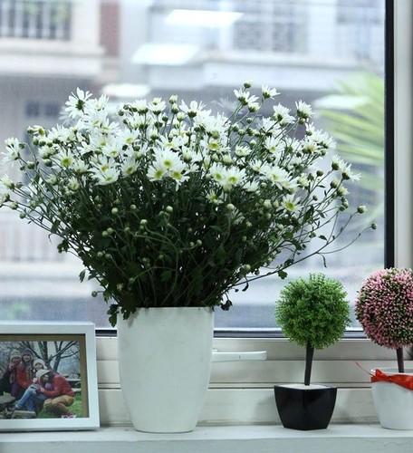 Cach trang tri nha dep tinh khoi voi cuc hoa mi-Hinh-3