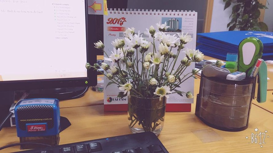 Cach trang tri nha dep tinh khoi voi cuc hoa mi-Hinh-6