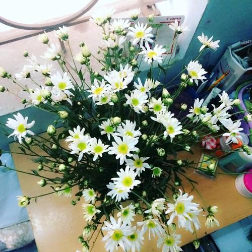 Cach trang tri nha dep tinh khoi voi cuc hoa mi-Hinh-7