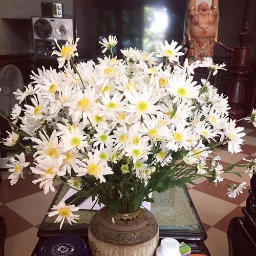 Cach trang tri nha dep tinh khoi voi cuc hoa mi-Hinh-8