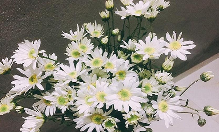 Cach trang tri nha dep tinh khoi voi cuc hoa mi-Hinh-9