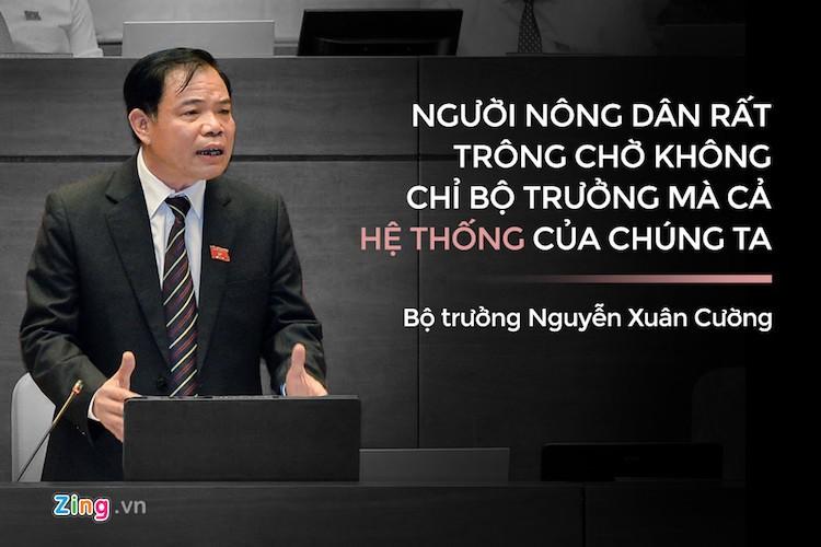 Phat ngon an tuong trong 3 ngay chat van cua Quoc hoi-Hinh-4