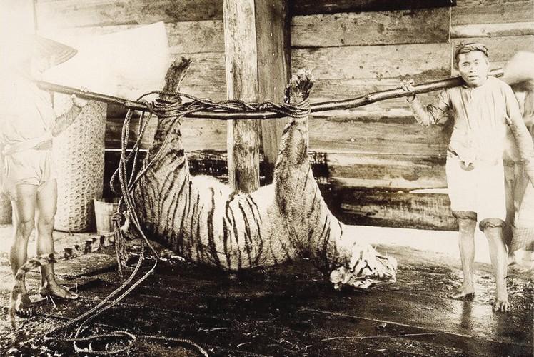 Da Lat thap nien 1920 trong anh cua Raymond Chagneau (2)-Hinh-6