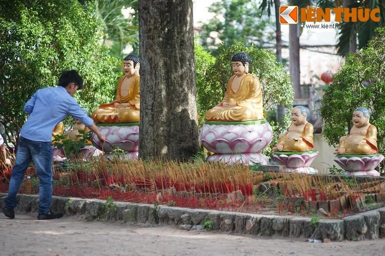 Kham pha ve dep to dinh danh tieng nhat Sai thanh-Hinh-12
