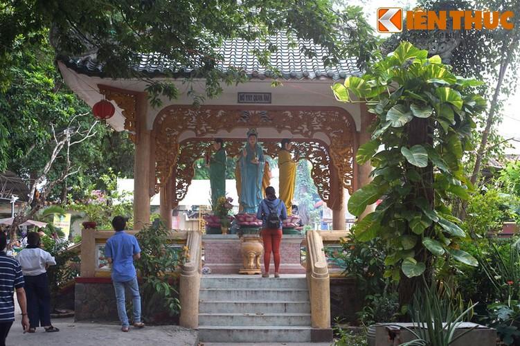 Kham pha ve dep to dinh danh tieng nhat Sai thanh-Hinh-14