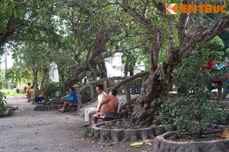Kham pha ve dep to dinh danh tieng nhat Sai thanh-Hinh-8
