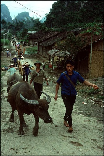 Anh doc ve sac mau cuoc song o Cao Bang nam 1994-1995 (2)-Hinh-5