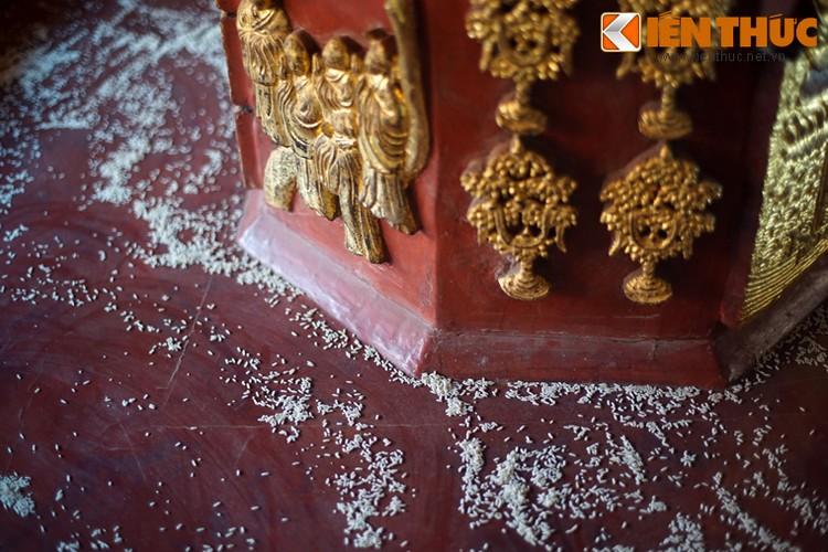 Ngam toa thap Cuu Pham Lien Hoa 300 tuoi cua Viet Nam-Hinh-13