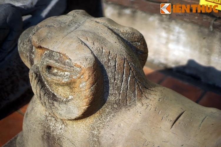 Tan muc con cuu da cuc la trong chua co Bac Ninh-Hinh-12