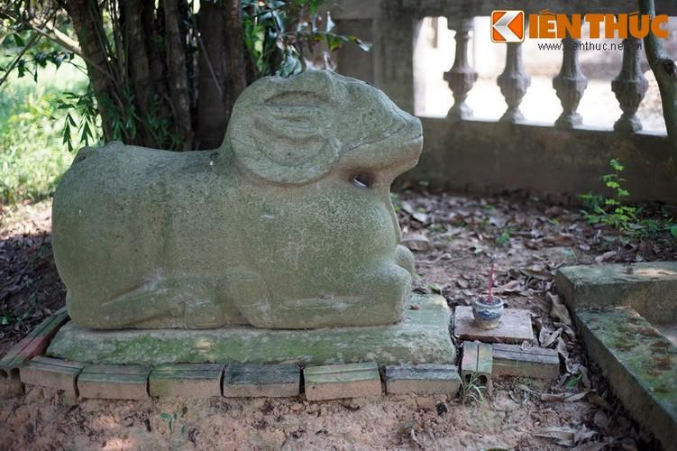 Tan muc con cuu da cuc la trong chua co Bac Ninh-Hinh-13