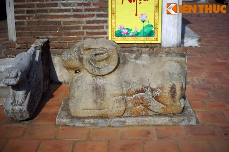 Tan muc con cuu da cuc la trong chua co Bac Ninh-Hinh-2